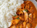 Indian Curry Chicken Dish